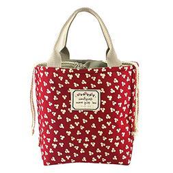 Bidear Cute Insulated Lunch Bag, Durable Canvas and Fashion
