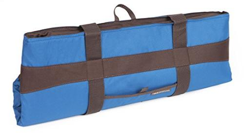 Rachael Ray Jumbo Thermal Bag for /Entertaining, Transport and Cold Food,