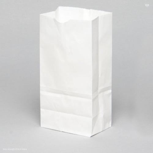 recycled white paper bag